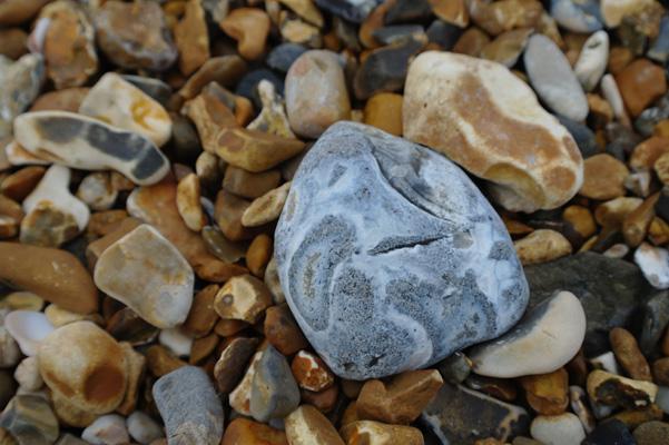Pebble on the beach at Hengistbury Head, Dorset, England.